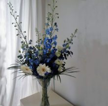 Blue and white flowers in vase with white background