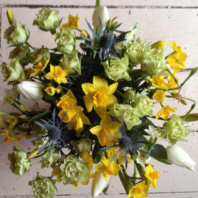 British daffodils and tulips